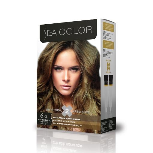 Sea Color Kit 6.0 Koyu Kumral resmi